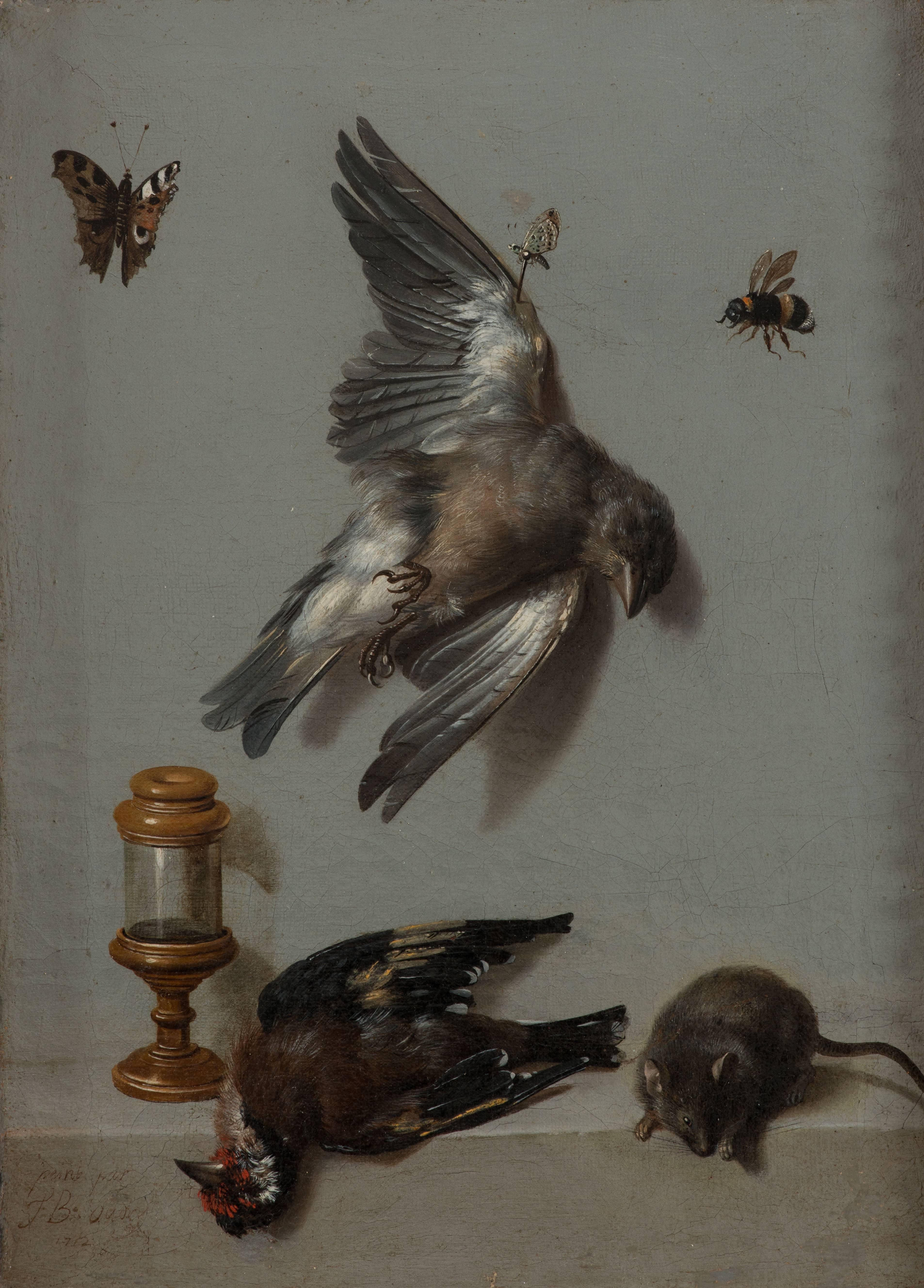 Nature morte avec deux oiseaux morts, une souris et trois insectes